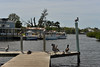 Back Behind the Seafood Shop (Eddie C3) Tags: tarponsprings gulfofmexico birds pelicans docks water florida
