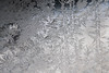 DSC_7821 (harynjk23) Tags: frostwork winter freez jégvirág tél macro nikon d5300 extension tubes
