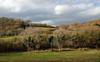 Media Valle del Tevere (Fabio Prosperi) Tags: umbria tevere todi inverno colline hills winter field wideangle landscape grandangolo