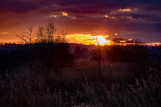 Sunset over the Somerset Levels