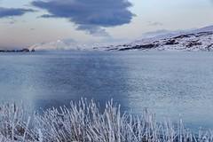 Eyjafjordur Iceland (Einar Schioth) Tags: eyjafjordur akureyri sky snow sea shore sigma2470 sigma day downtown frost canon clouds cloud coast vividstriking nationalgeographic ngc nature mountains mountain mtkaldbakur svalbardsstrond svalbardseyri eyrin picture photo outdoor iceland ísland ice einarschioth