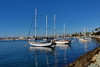 Winter Is Never Harbored Here (Golden Ginkgo) Tags: sandiegobay seascapes