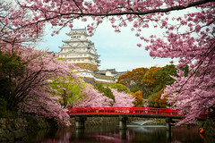 Himeji Castle (anekphoto) Tags: castle spring japan himeji water travel architecture park tourism asia landmark sakura bridge kyoto red flower landscape reflection culture blossom river tourist oriental heritage cherry background white season floral building ancient history japanese beautiful design festival matsumoto fort sky old tree outdoor day pink traditional city leisure asian branch world