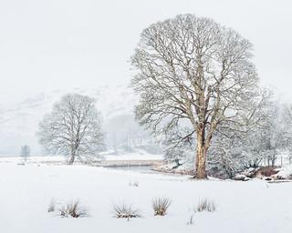 River Brathay, a snow scene