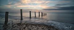 2017 - 12-28 - Widescreen - Moana - Sunset 04.jpg (stevenlazar) Tags: pylons beach ocean sunset australia colour water moana waves jettyruins adelaide 2017 southaustralia clouds