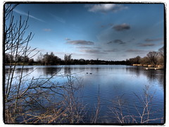 Symphonie in Blau - Der Südsee (1elf12) Tags: südsee lake braunschweig winter deutschland germany prettyinblue crazytuesdaytheme 7dwf cof024dmnq cof024mari cof024mvfs cof024cher cof024uki