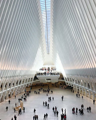 World Trade Center Oculus (barts.world) Tags: city light highrise trail wtc westfield architecture building mall white modern clean space