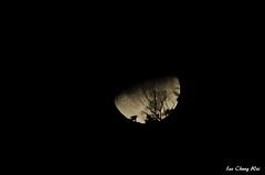 20180224 南方澳漁村 7D2_0379 (李忠衛 leechungwei19780528@gmail.com) Tags: 2018 台灣 taiwan 宜蘭 yilan ilan 蘇澳 suao 南方澳 nanfangao 月球 月亮 moon canon eos 7d2 7d mark ii 李忠衛 lee chung wei
