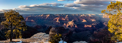 El Tovar - Feb. 2018 -_DSC1702-Pano (dave minkel photography) Tags: grandcanyon southrim nikon d800e winter 2018 arizona nationalpark showcase
