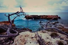 Sea rocks @ Cabo Rojo (GOJR.) Tags: farolosmorillos landscape travel fujifilmvelvia50 puertorico caborojo analog velvia50 nikkor20mmf35 seascape nikonf4