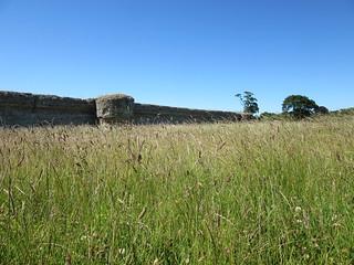 Burgh Castle Roman Fort, Burgh Castle, Norfolk