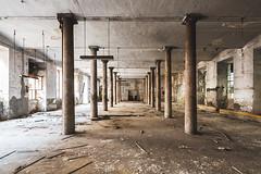 Il tempio pagano (Seb Lo Turco) Tags: abbandono abandonedfactory decay urbex deindustrialization postiabbandonati