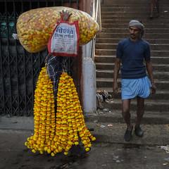 Flowers (SaumalyaGhosh.com) Tags: flowers people work encounter men kolkata colors india calcutta street streetphotography