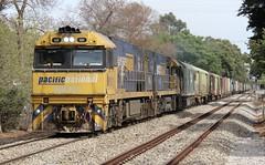 2PM6 Hawthorn 01/02/2018 (Dom Quartuccio) Tags: 2pm6 nr101 nr69 g537 pn pacific national pacnat intermodal steel train trains rail railway railroad sa south australia adelaide hawthorn