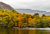 Grasmere Autumn (Keith in Exeter) Tags: grasmere autumn colour fall foliage leaves tree forest woodland lake water shore lakedistrict nationalpark mountain landscape cloud reflection sky