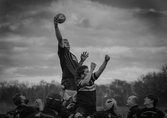 father ted (FireDevilPhoto) Tags: sport competitivesport competition athlete sportsteam outdoors people groupofpeople teamwork muscularbuild action sportsuniform men rivalry exercising running sportstraining team sportsclothing sportsrace everypixel rugby union