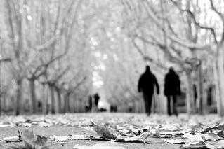 Días de invierno