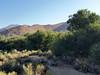 Ridgecrest_2017 19 (dever_brett) Tags: california ridgecrest desert nissansentra