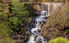 Linhouse Water, Livingston (ian_woodhead1) Tags: water linhouse livingston scotland long exposure waterfall