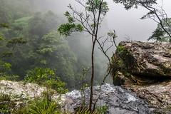 Over the edge (palbion) Tags: springbrook queensland australia au