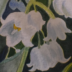 The Secret Garden-HMM! (Busy-Off To Canada Friday) Tags: macromondays myfavouritenovel thesecretgarden flowers lilyofthevalley white bells poisonous painting watercolour mine