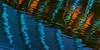 Reflection, Crystal Bridges Museum_DSC2795-copy-1-C-1-A-2 (Sam Yaffe) Tags: select