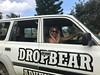 Drop Bear Adventures (Drop Bear Adventures Fraser Island) Tags: fraser island adventure tours kgari queensland australia nature camping beach dropbear 4wd driving