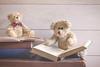 58/365: Bear-ly educated (judi may) Tags: 365the2018edition 3652018 day58365 27feb18 teddies happyteddybeartuesday teddybears books reading suitcase vintagesuitcase wood vintagebooks vintage canon7d 50mm