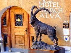 Zuoz (HITSCHKO) Tags: schweiz suisse svizzera switzerland bündnerland graubünden engadin maloja laplaiv zuoz schellenursli