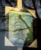 20180121-006 (sulamith.sallmann) Tags: arbeit kunst ars art bild eiffelturm illusion picture schaufenster schieferturmvonpisa trade turm berlin deutschland deu sulamithsallmann