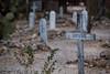 Arizona-2018_0589 (PetteriJarvinen) Tags: tombstone arizona unitedstates us boothillcemetery boothill