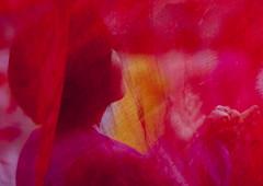 North Korean students during a mass dance performance on september 9 day of the foundation of the republic, Pyongan Province, Pyongyang, North Korea (Eric Lafforgue) Tags: 2024years asia asian capitalcities celebration chosonot communism dance dancers dancing day dictatorship dprk groupofpeople hanbok happiness horizontal joseonoth koreanculture largegroupofpeople leisureactivity lifestyles massball massdance nk116596 northkorea northkorean oneperson onepersononly onewoman outdoors patriotism pink pyongyang students traditionalclothing urbanscene woman women pyonganprovince 北朝鮮 북한 朝鮮民主主義人民共和国 조선 coreadelnorte coréedunord coréiadonorte coreiadonorte 조선민주주의인민공화국 เกาหลีเหนือ קוריאההצפונית koreapółnocna koreautara kuzeykore nordkorea північнакорея севернакореја севернакорея severníkorea βόρειακορέα