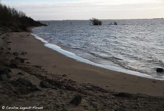 Hellevoetsluis - North Sea