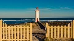 Won't you light my way (Scottmh) Tags: 2018 australia d7100 fairy fence griffiths island january leading lighthouse liness nikon ocean port rocks sea summer victoria