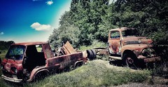 pieces of eight...(HTT) (BillsExplorations) Tags: vintage old truck van oldtruck decay rust psychosilo saloon bar displays rural field truckthursday htt eight motorcycle grass styx piecesofeight