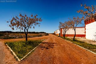 El color del sur. Andalucìa, abril 2012.