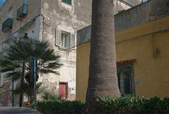 L1014688 (Pierre Wayser) Tags: 2009 italia ischia leicam8elmarit28 whoownstherains
