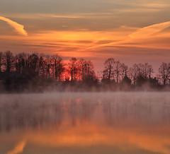 Winter lust (Robyn Hooz (away)) Tags: cold winter inverno riflesso reflection nuvole clouds tracce scie trails fili wires alberi trees arquà petrarca padova italy
