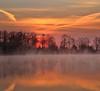 Winter lust (Robyn Hooz) Tags: cold winter inverno riflesso reflection nuvole clouds tracce scie trails fili wires alberi trees arquà petrarca padova italy