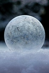 365 - Image 59 - Frozen bubble... (Gary Neville) Tags: 365 365images photoaday 5th365 2018 sony sonyrx10iv rx10iv rx10m4 m4 polaroid250d frozen frozenbubble garyneville