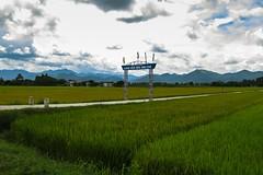 Podél silnice k laoské hranici (zcesty) Tags: pole krajina hory brána vietnam27 vietnam dosvěta điệnbiên vn