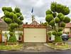 Ascot Vale, VIC (phunnyfotos) Tags: phunnyfotos australia victoria vic melbourne ascotvale suburbia suburban suburb garden house fence topiary naturestrip footpath nikon d750 nikond750 raining garage shed flag streetplanting green