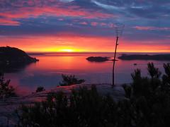 Pink in the East Mouth II (SGarriott) Tags: sgarriott scottgarriott olympus omd em5ii 1240mmf28 landscape seascape sea norway norge harbour kristiansand coast kyst sjø havn sunrise soloppgang pink ocean