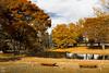 IMG_1655 (Matthew_Li) Tags: red leaf japan maple leaves