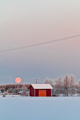 Super Moon And A Red Hut (k009034) Tags: 500px yellow trees sky sunrise morning red winter cold old building moon snow fields countryside weather barn rural wooden telephone line hut overcast farming covered no people clear coldness super horizon over land finland tranquil scene scandinavia copy space teamcanon