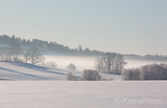 Cold misty winter morning, Norway (KronaPhoto) Tags: 2018 natur vinter winter fog dis tåke cold frozen landscape landskap norway tønsberg nature snø snow tree