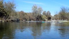 Tuolumne River Weir