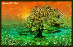 Albero con laghetto - Febbraio-2018 (agostinodascoli) Tags: albero mandorlo nikon nikkor cianciana sicilia paesaggi landscape nature texture colore fullcolor photoshop photopainting agostinodascoli impressionismo fiori erba art digitalart digitalpainting creative cielo