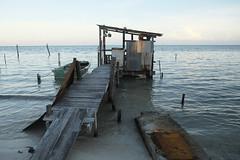 Jetty, Caye Caulker, Belize  2017 (fenncolin) Tags: caye caulker unspoilt tourism caribbean