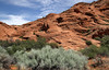 Petrified (arbyreed) Tags: arbyreed redrock sandstone petrifiedsanddunes redsandstone brush washingtoncountyutah snowcanyon sage sagebrush pinionpine juniper